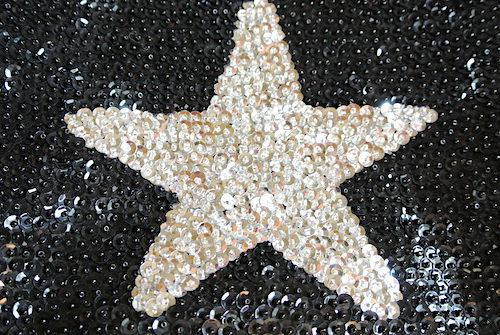 星柄スパンコールポーチ